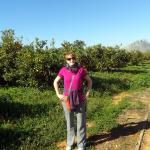En los naranjos de la vía verde-1