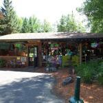 The Frog Tiki Bar