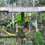 Photo de Yacutinga Lodge