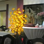 Фотография Lotus Restaurant