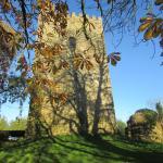 Photo de Ballaghmore Castle