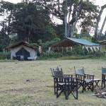 Kirurumu Ngorongoro Camp照片