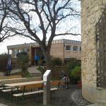 Turm und Gartenlokal unter den Walnussbäumen