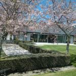 Spring time at Takatu Lodge
