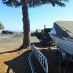 Motutere Bay Holiday Park Foto