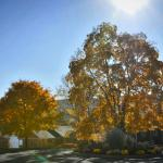 Sun Castle Resort Entrance Drive in the Fall