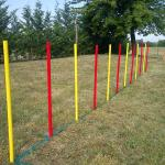 Obstacle course for dog agility