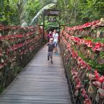 Качающийся мостик
