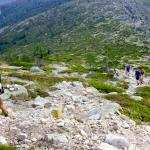 Trail running in one the world's most unique National Parks: Sierra de Guadarrama.