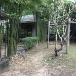 Gims Resort Foto