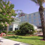 Hilton Garden Inn Jacksonville Airport Foto