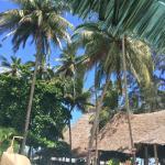 Neptune Paradise Beach Resort & Spa Photo