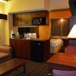 Suite with Sofa Microfridge