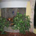 une cheminée