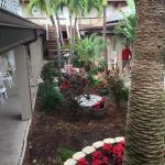 Palm Crest Resort Motel Foto