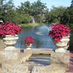 Duck Pond, center of resort grounds