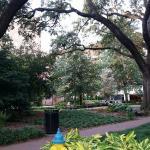 Reynolds square view 2