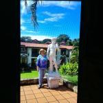 Photo of Resort Martino Hotel & Spa
