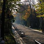 Biedermeier Friedhof Sankt Marx im Herbst