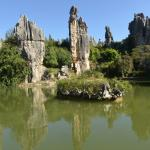 Small Stone Forest Foto
