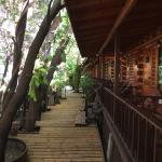 Log Home Boutique Hotel