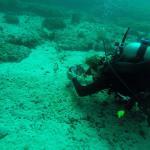 Foto de Omanta Scuba Diving Academy