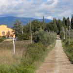 Toscana Verde Foto
