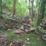Lovely little cairns found on the Tui Domain walk