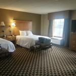 Hampton Inn & Suites Albany - Downtown Foto