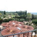 Vistas del Banquete y de los olivos desde la Suite Pere Margarit