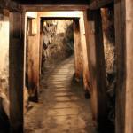 Foto de Hangtown's Gold Bug Park