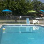 The Parkway Pool