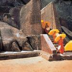 Culturele tours