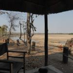 The Wildlife Camp Foto