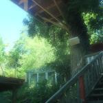 Foto de Kuranda Rainforest Accommodation Park