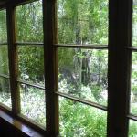 Vista desde cabaña