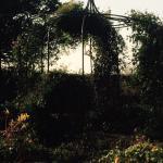 Bild från 1806805