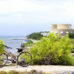 Cayman Castle