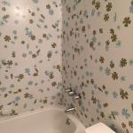 1960's Wall of Bathroom. On all sides including the back of door