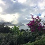 Landscape - Hanalei Bay Resort Photo