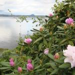 Paeroa Lakeside Homestay Foto