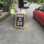 Puhoi Valley Cafe and Cheese Store Photo
