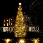 A few days away from our Annual Tree Lighting: Inquire at Guest Service