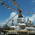Himalayan Leaders - Day Tours