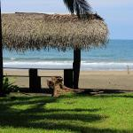 Photo of Hotel Rustico de Playa Perla Negra