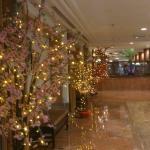Federal Hotel Foto