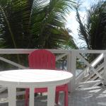 Conch Shell Inn Foto