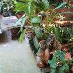 Foto de Oasis Spa Chiang Mai