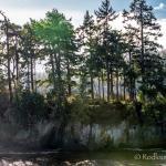 Salt Creek Recreation Area Foto