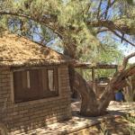 Rustic river hut